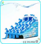 China 2018 hot-sale Rainbow Inflatable Water Slides used with swimming pool wholesale