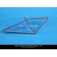 GR9 titanium fat bike frame