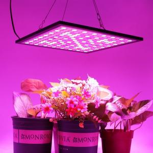 China 300x300mm Indoor Full Spectrum LED Grow Lights Dimmable With 3000K-6500K CCT on sale