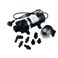 WHALEFLO DP-160M 220V AC 160psi 12v dc high pressure car wash water pump cleaner