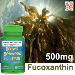China laminaria japonica seaweed extracts fucoxanthin 1% oil, powder CAS No.3351-86-8 high purity on sale