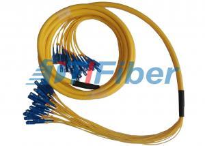 China 24 Fiber Breakout Fiber Optic Patch Cord , Universal Fiber Optic Jumper on sale
