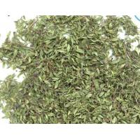 Thymus quinquecostatus Celak leaf Mongollian Thyme Herb is a spice & herb di jiao ye