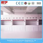 Anti - Acid Walk In Fume Hood Durable PP Structure For Laboratory