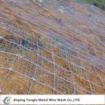 Rockfall Protection Nets|PVC Coated or Galvanized Hexagonal Wire Mesh for Protection