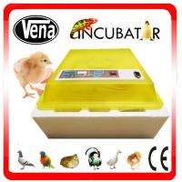 CE Approved Full Automatic 48 eggs incubator mini chicken egg incubator for sale