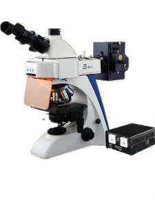 China Inverted Optical Upright Fluorescence Microscope 1000X With Multi Color Filter on sale