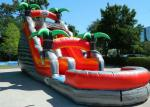 Colorful Backyard Tropical Inflatable Water Slide With 5 Years Warranty