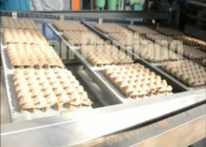 China Big Capacity Recycled Pulp Egg Tray Production Line Rotray Type Energy Saving on sale