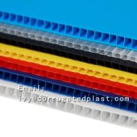 High Quality PP Corrugated Plastic Sheet/Corflute Sheet/PP Board for Packing, Signage, Protection