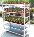 Multiple Shelf Heavy Duty Garden Nursery Transport Danish Flower Trolleys From Qingdao China