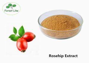 China Pure Raw Cosmetic Ingredients Natural Rosehip Extract Powder 20% polyphenols on sale