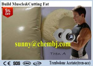 China 99% Dark Yellow Powde Tren - Ace Cutting Cycle Steroids Trenbolone Acetate CAS  10161-34-9 For Gaining Lean Muscle on sale