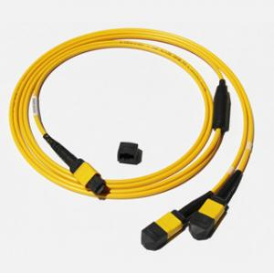 Quality MPO-MPO Low insertion loss,high speed network,Yellow/Aqua color fiber optic for sale