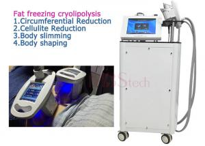 China 4 Handle Fat burning Cryolipolysis Machine For Home Use on sale