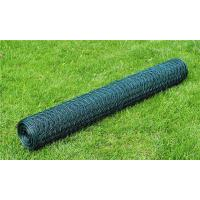 China PVC coated Green color Hexagonal Chicken Wire Net on sale