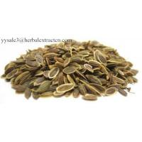 Dill Seed Extract, 10:1 TLC, 100% natural feed additive, food additive, Shaanxi Yongyuan Bio-Tech, manufactuerer