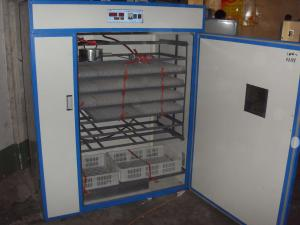 China Quail egg incubator--duck egg incubator 2012 on sale