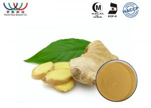 China Pharmaceutical Raw Ginger Root Extract Powder Relieve Nausea And Vomiting on sale