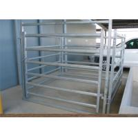 China Farm Agriculture Welded Heavy Duty Cattle Panels 6 Bar Horse Gate Panels on sale