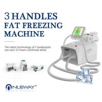 2 Cryo handles work same time portable cryolipolysis+Lipo laser machine