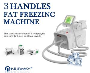 China professional cryolipolysis fat freezing machine home device fat freeze with ce&ISO on sale