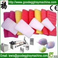 EPE Foam Pear sleeve mesh net Extrusion line