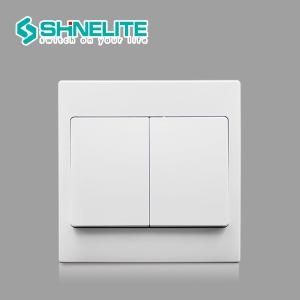 China Shine range plastic plate 10A 2 gang 1 way wall switch with CE on sale