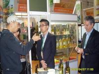 China Shanghai Olive Oil Expo 2013 on sale