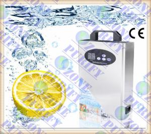 China 0.5g/1g/2g home ozone generator for air treatment and water treatment on sale