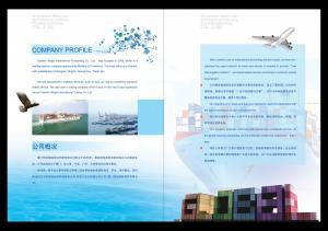China ocean freight ,air freight ,custom clearance on sale