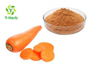 China Organic Vegetable Extract Powder Bulk Dehydrated Dried Carrot Fiber Powder on sale