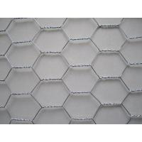 China Profeessional 1 Inch Galvanized Hexagonal Wire Mesh Netting For Rabbit Cage on sale