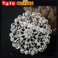 One Piece Badges 9pcs Brooches Anime Metal Pins,Silver Crystal White Brooch Wholesale