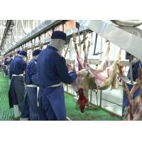 China Goat Mutton Split Meat Production Line Slaughter Conveying Whole Processing Type on sale