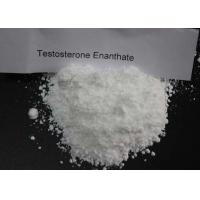 White Test Enanthate Powder , Fast Muscle Growth Steroids CAS 315 37 7 Pharmaceutical Grade