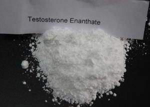 China White Test Enanthate Powder , Fast Muscle Growth Steroids CAS 315 37 7 Pharmaceutical Grade on sale