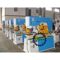 Comebined Punching and Shearing Machine hydraulic iron worker