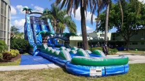 China Blue Jungle Theme Large Double Lane Water Slide With Big Pool on sale