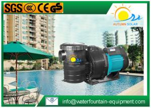 China High Flow Rate Swimming Pool Pumps Electric Anti - Rust For Pond Filtration on sale