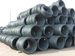 China Steel Wire Rod(SAE 1008B) on sale