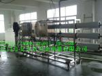 Pure Drinking Water Treatment Systems /RO  Machine