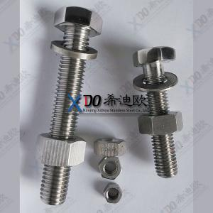 China duplex steel 2207 stainless steel China bolt and nut M6-M64 on sale