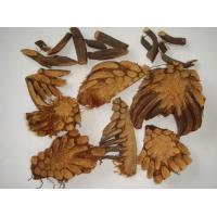 Dryopteris crassirhizoma Extract,  10:1 TLC, Корневище папоротника экстракт, Chinese manufacturer, Shaanxi Yongyuan Bio