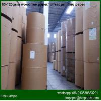 Bright Color Woodfree Offset Paper A4 Size