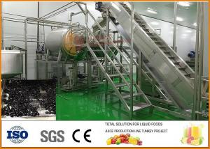 China Turnkey SS304 Blueberry Dried Fruit Production Line CFM-PB-03-22T on sale