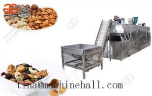 China Sunflower Seed Roasting Machine Cost on sale