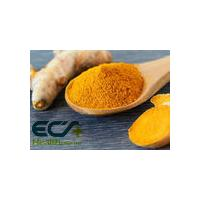Ginger Oil; Organic Food Ingredients, Freeze- Dried; antioxidant factors;Natural origin;CO2 extraction of selected ginge
