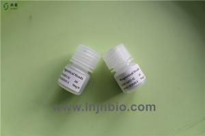 China Lnjnbio paramagnetic silica-based nano magnetic particles/beads for DNA/RNA extraction (-OH) on sale