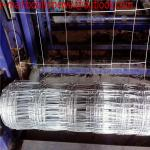 cow wire mesh double edged field fence cheap wire fence/grassland fence mesh/Cattle fence/Cow Fence/ Animal Fence